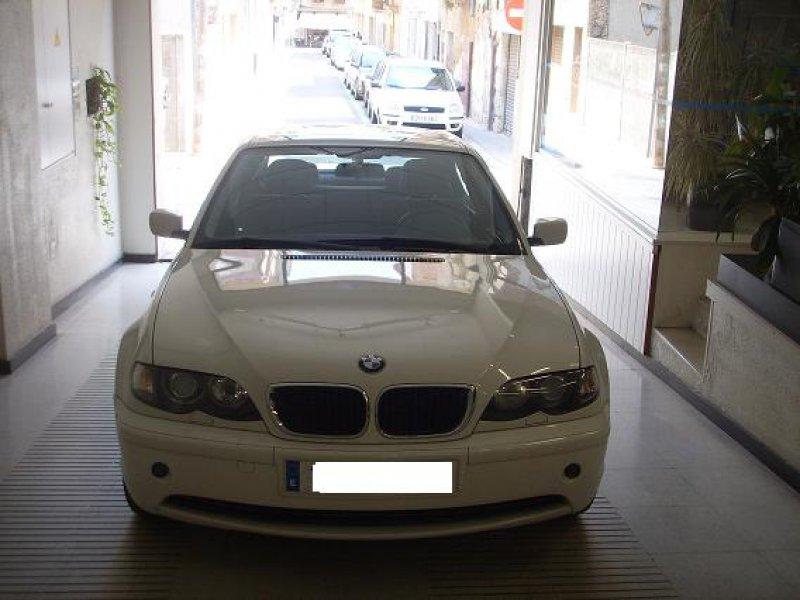 BMW Serie 3 318i 318i